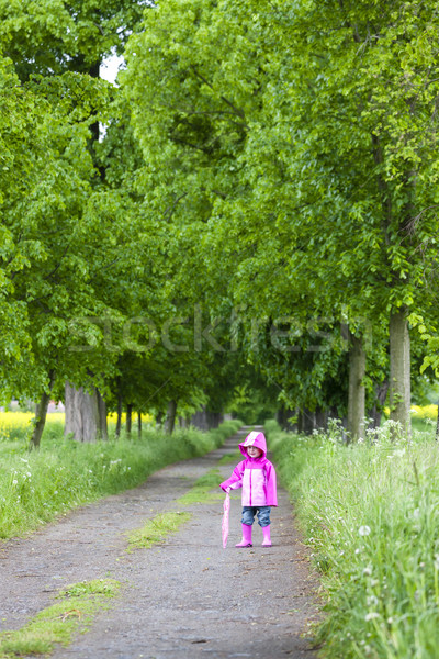 Kislány visel gumicsizma tavasz sikátor lány Stock fotó © phbcz