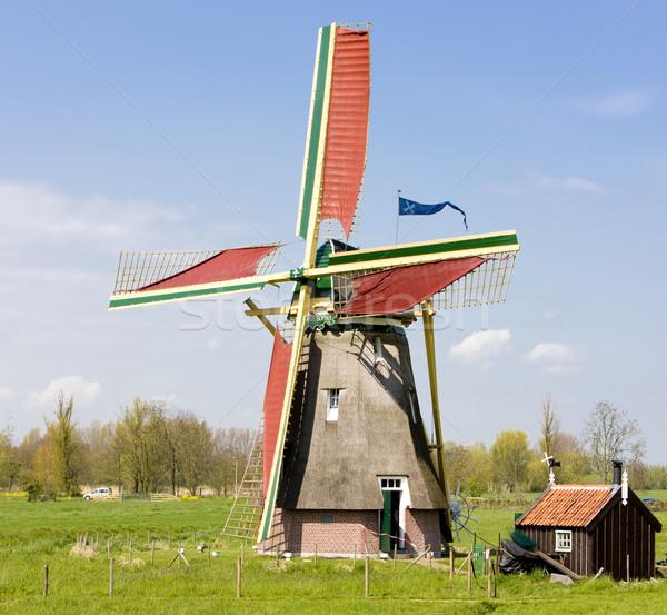 Stok fotoğraf: Fırıldak · Hollanda · seyahat · değirmen · açık · bir