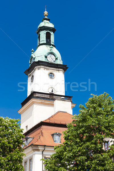 Mairie Pologne maison bâtiment ville architecture Photo stock © phbcz
