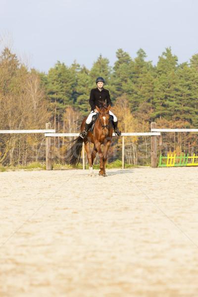 Paardenrug vrouwen paard lopen ontspannen Stockfoto © phbcz