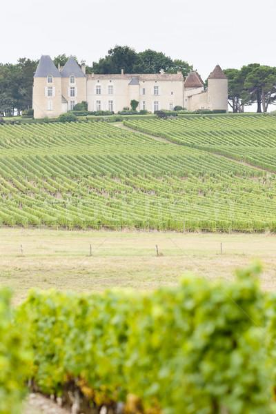 vineyard and Chateau d'Yquem, Sauternes Region, France Stock photo © phbcz
