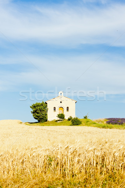 chapel with grain field, Plateau de Valensole, Provence, France Stock photo © phbcz