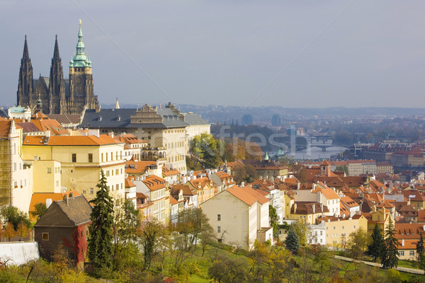 view of city from Petrinske orchards, Prague, Czech Republic Stock photo © phbcz