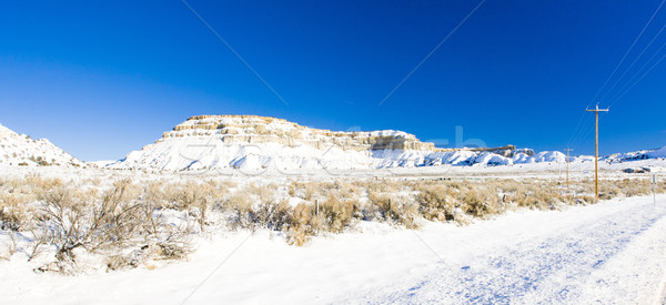 Zimą krajobraz Utah USA śniegu rock Zdjęcia stock © phbcz