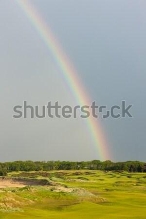 Foto d'archivio: Rainbow · campo · da · golf · Scozia · cielo · golf · panorama