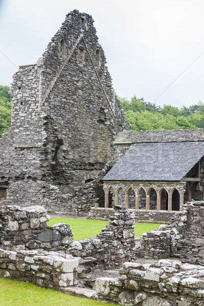 ruins of Glenluce Abbey, Wigtownshire, Scotland Stock photo © phbcz
