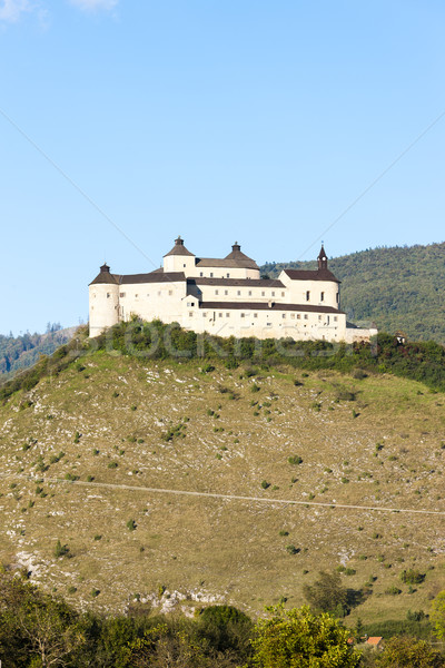 Kasteel Slowakije architectuur Europa geschiedenis buitenshuis Stockfoto © phbcz