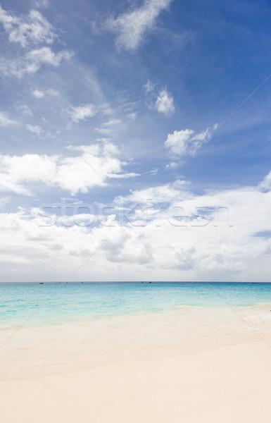 пляж Барбадос Карибы морем лет Сток-фото © phbcz