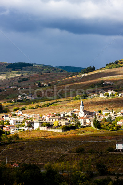 Village paysage automne Europe vigne agriculture Photo stock © phbcz