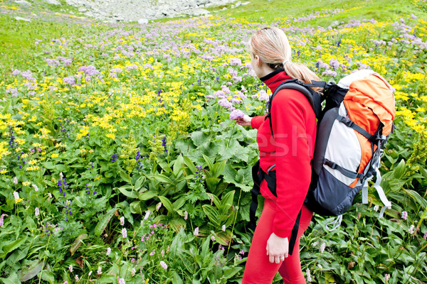 woman backpacker in Vysoke Tatry (High Tatras), Slovakia Stock photo © phbcz