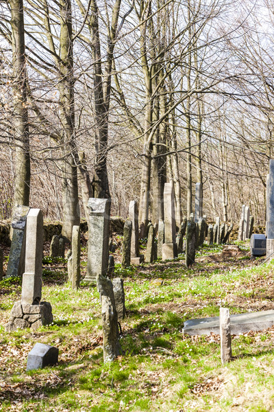 Jewish cemetery, Batelov, Czech Republic Stock photo © phbcz