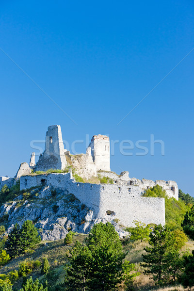 ruins of Cachtice Castle, Slovakia Stock photo © phbcz