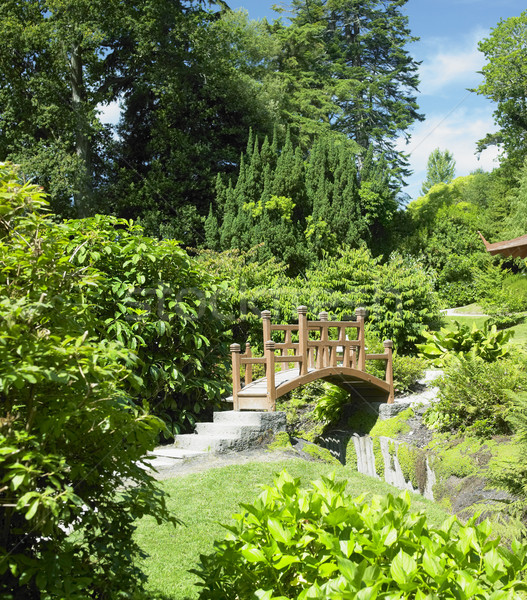 Japanese Garden, Powerscourt Gardens, County Wicklow, Ireland Stock photo © phbcz