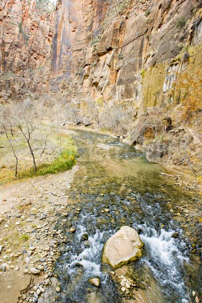 Zion National Park, Utah, USA Stock photo © phbcz