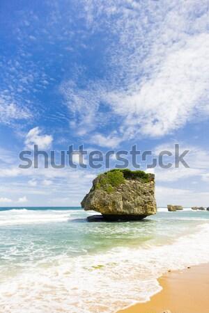 Oost kust Barbados caribbean landschap zee Stockfoto © phbcz
