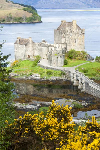 Castillo Escocia arquitectura historia Bush aire libre Foto stock © phbcz