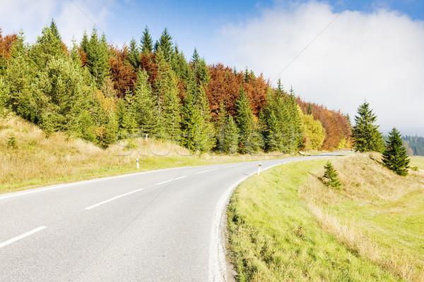 road in Nizke Tatry (Low Tatras), Slovakia Stock photo © phbcz