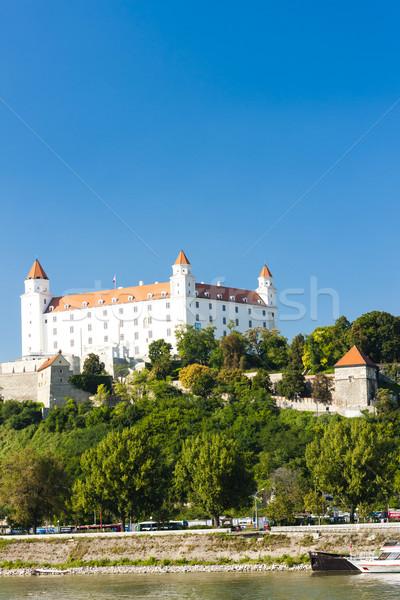 Bratislava castel Slovacia constructii călători arhitectură Imagine de stoc © phbcz