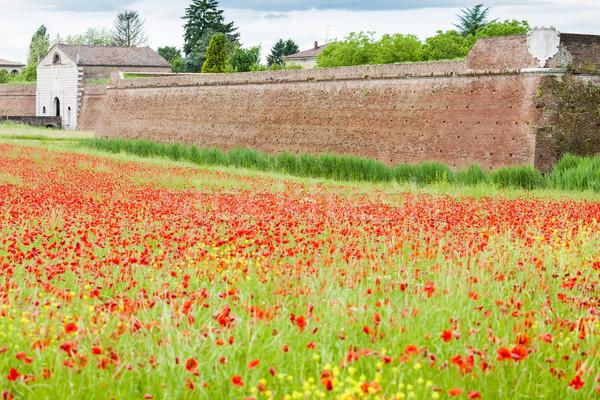 要塞 市 イタリア 花 建物 壁 ストックフォト © phbcz