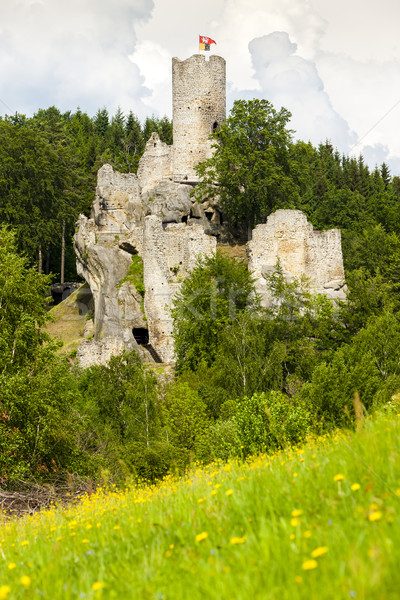 ruins of Frydstejn Castle, Czech Republic Stock photo © phbcz