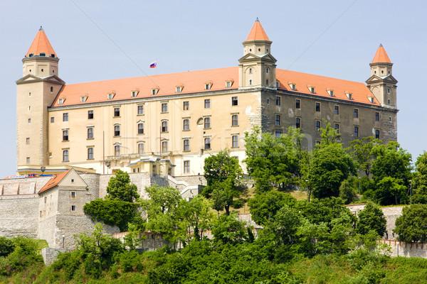Bratislava castel Slovacia constructii arhitectură istorie Imagine de stoc © phbcz
