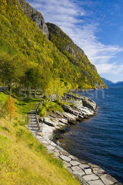 пейзаж Норвегия морем зеленый синий ландшафты Сток-фото © phbcz