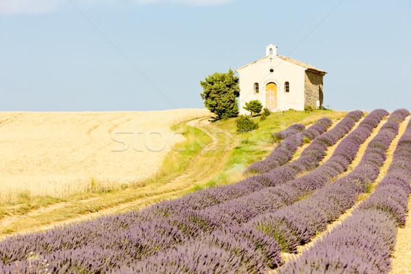Capilla lavanda grano campos meseta edificio Foto stock © phbcz