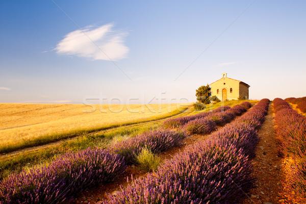 Chapelle lavande grain champs plateau fleur Photo stock © phbcz