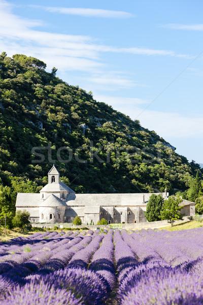 Abadia campo de lavanda França edifício campo viajar Foto stock © phbcz
