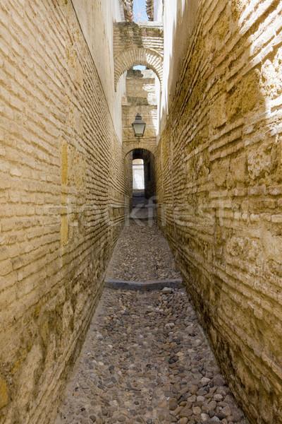 street of Cordoba, Andalusia, Spain Stock photo © phbcz