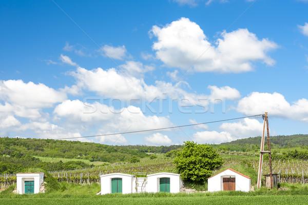 şarap bölge düşük Avusturya Bina manzara Stok fotoğraf © phbcz