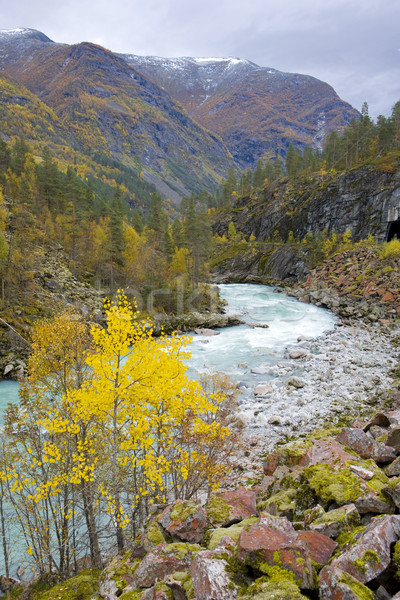 Jostendalen valley, Norway Stock photo © phbcz