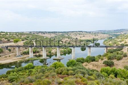 railway viaduct Guadiana River near Serpa, Alentejo, Portugal Stock photo © phbcz