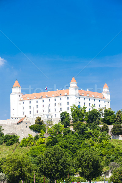 ブラチスラバ 城 スロバキア 市 旅行 アーキテクチャ ストックフォト © phbcz