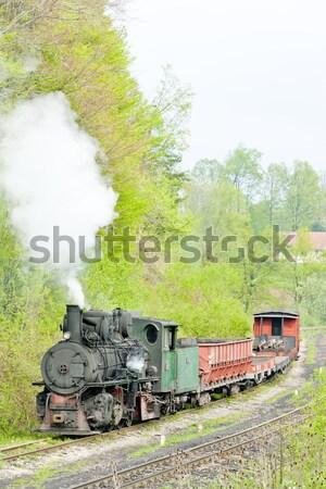 Keskeny kaliber vasút vonat Európa gőz Stock fotó © phbcz