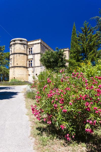 Jardin palais France bâtiment Voyage architecture Photo stock © phbcz