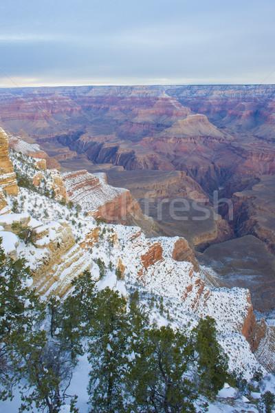 ストックフォト: グランドキャニオン · 公園 · 冬 · アリゾナ州 · 米国 · 風景