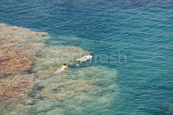 snorkeling at Cap de Peyrefite, Languedoc-Roussillon, France Stock photo © phbcz