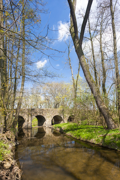 baroque bridge in Vlci Dul near Zasmuky, Czech Republic Stock photo © phbcz