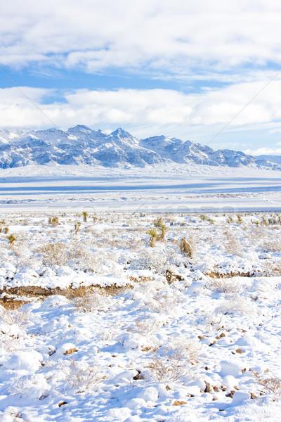 Dağlar Las Vegas Nevada ABD manzara kar Stok fotoğraf © phbcz