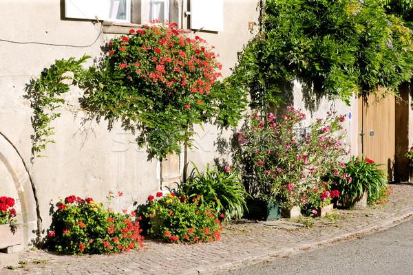 Stockfoto: Frankrijk · bloem · huis · dorp · buitenshuis