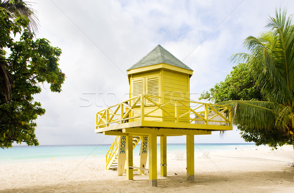 Cabine plage Barbade arbre mer Palm Photo stock © phbcz