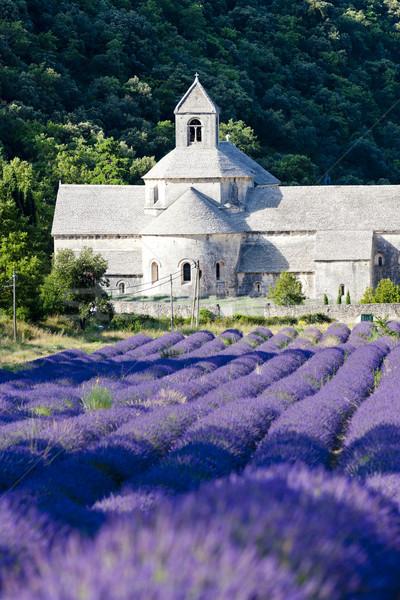 Abadia campo de lavanda França edifício igreja arquitetura Foto stock © phbcz