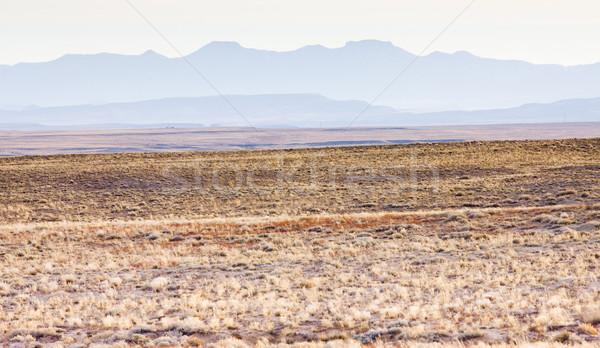 Paisagem Colorado EUA montanha viajar paisagens Foto stock © phbcz