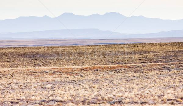 landscape of Colorado, USA Stock photo © phbcz