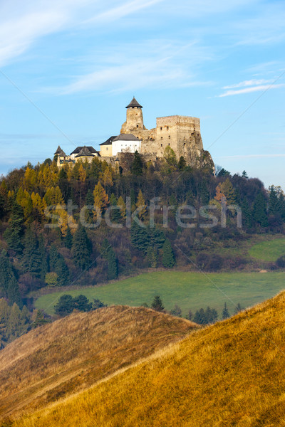 Stara Lubovna Castle, Slovakia Stock photo © phbcz