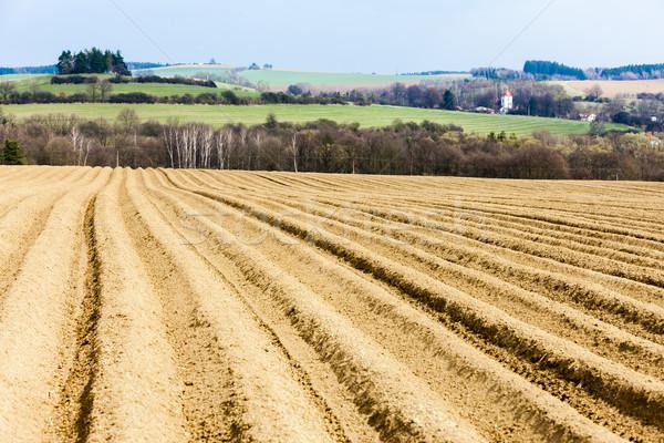 Panorama campo Repubblica Ceca Europa suolo scenario Foto d'archivio © phbcz