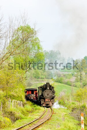 Stoomlocomotief Servië reizen stoom buitenshuis vervoer Stockfoto © phbcz