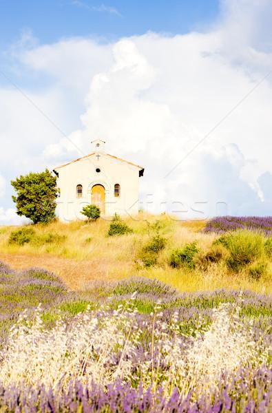 Chapelle champ de lavande plateau fleur bâtiment plantes Photo stock © phbcz