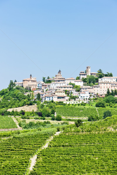 Neive wth vineyards, Piedmont, Italy Stock photo © phbcz